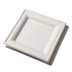 Ecofriendly Square Plate  sc 1 st  Krishna Enterprises - Home Page : disposable thali plates - pezcame.com